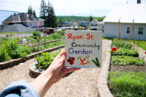 painted-tile-ryan-street-community-garden